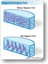 Effects of magnetic field on MR fluids